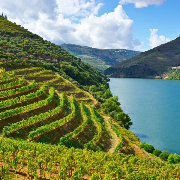 Unspoilt Douro Valley